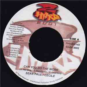 Sean Paul / Cecile - Can You Do The Work mp3 album