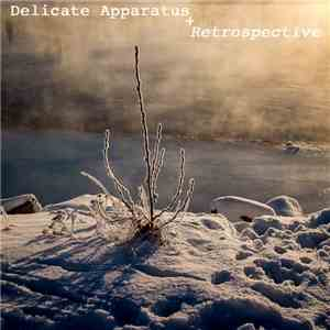 Delicate Apparatus - Retrospective mp3 album
