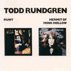 Todd Rundgren - Runt/Hermit Of Mink Hollow mp3 album